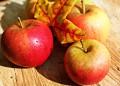 Нейно величество ябълката