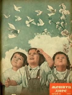 5-1951