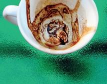 """""""Гръцко кафе"""". От Катерина Хапсали"""