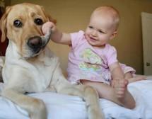 Децата имат нужда от домашни любимци. 25 доказателства