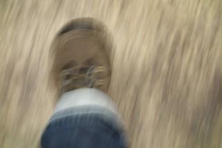 foot-538324_1280