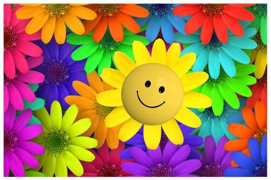 flower-257151_1280