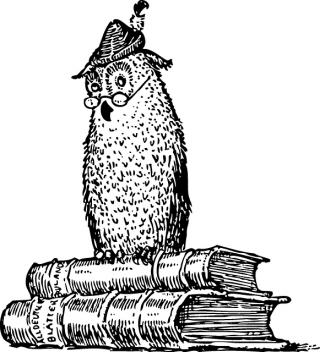 owl-31691_640