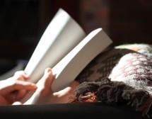 Идеален ден за четене на глас