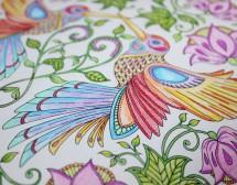 Рисувателните книги – арт-терапия за големи