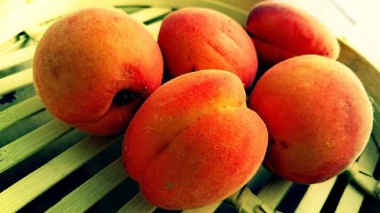 apricots-825094_640