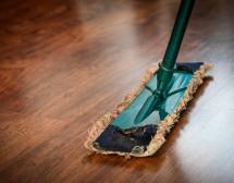 В домашната прах има хиляди микроби