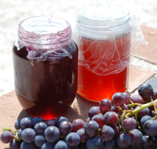 grapes-grape-jam-and-grape-jelly