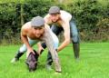 Секси са, нали? Ирландски фермери позират за благотворителен календар