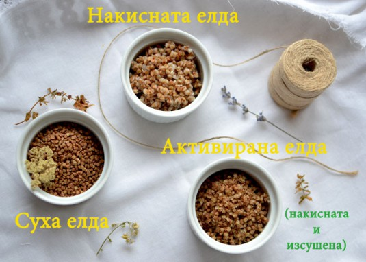 activated-grains