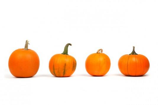 autumn-2905_640