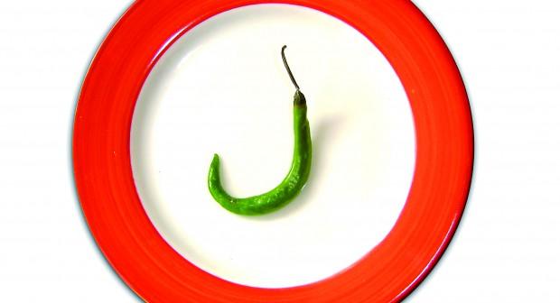 Гладът – лечение или мъчение за тялото?