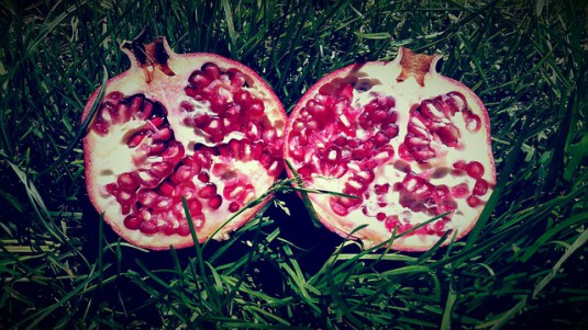 pomegranate-713487_640