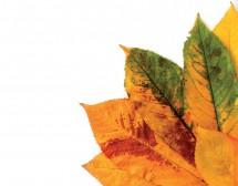 Стратегии срещу есенна депресия