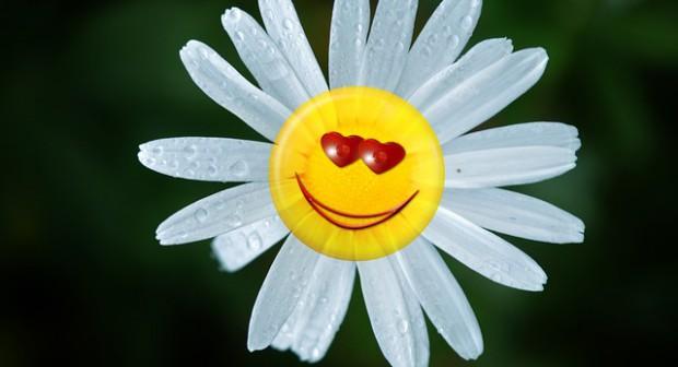 Щастието е… това, което се случва