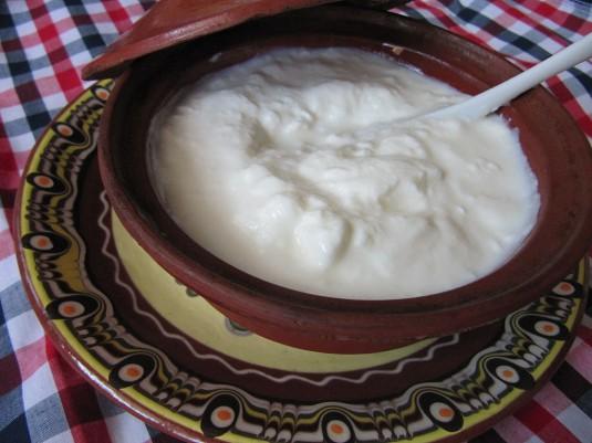 Bulgarian_yogurt