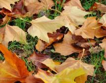Какво ще е времето през ноември