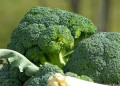 Броколите са бомба с витамин C