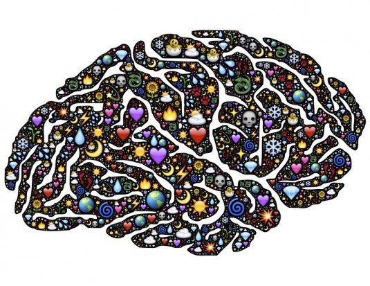 brain-954815_960_720