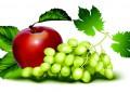 Лечебната сила на плодовете