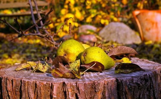 pears-1018490_960_720