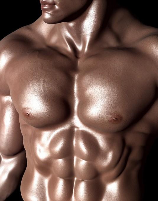 bodybuilder-331671_960_720