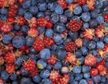 Горските плодове и ябълките помагат за отслабване