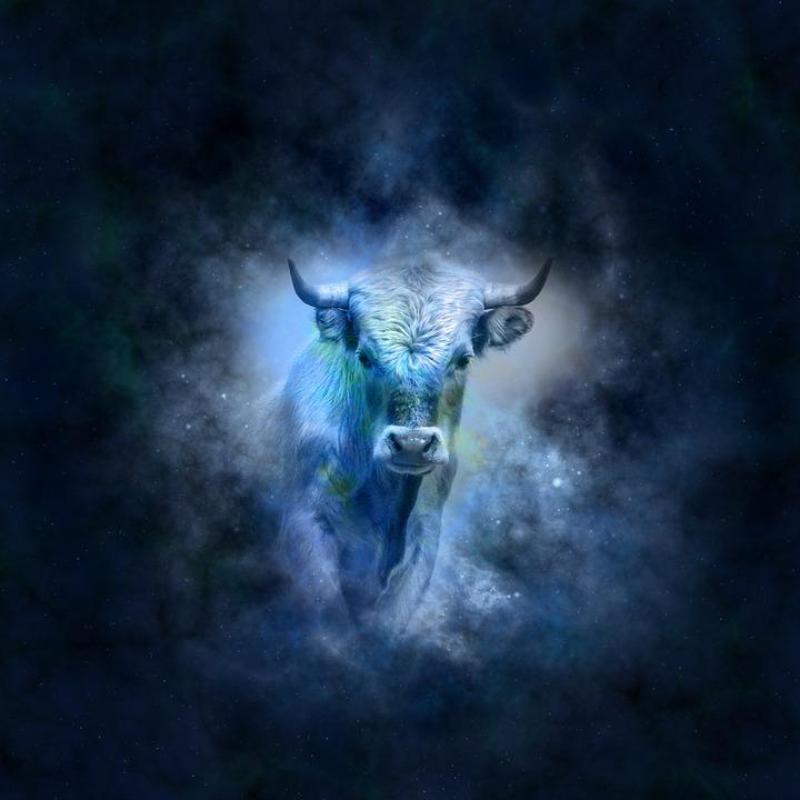 horoscope-639127_960_720
