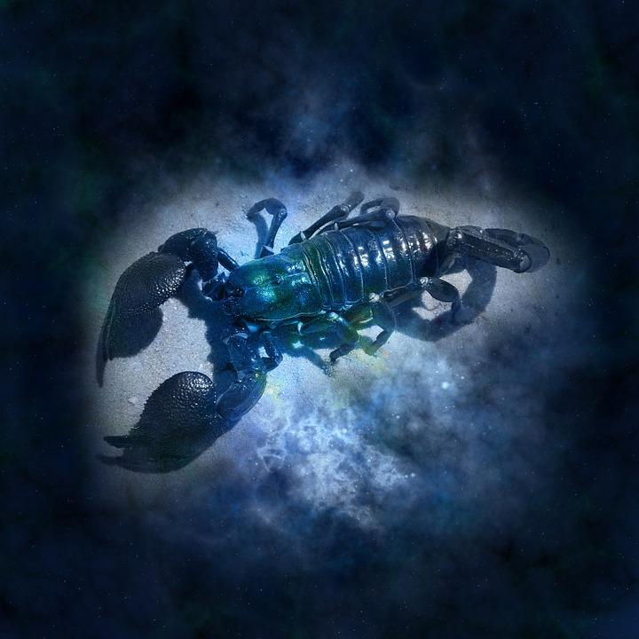 horoscope-644864_960_720