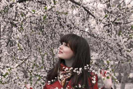 spring-1003599_960_720