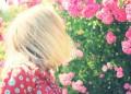 Доказаха! Блондинките са по-интелигентни от брюнетките!