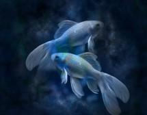 Любовните връзки на жената Риби