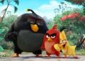 Нови книжки с героите от Angry Birds
