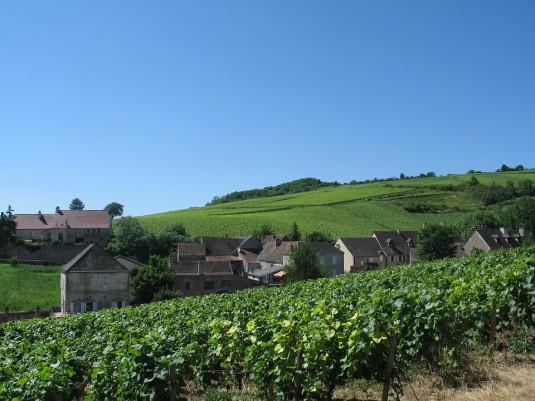 burgundy-490869_960_720
