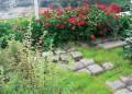 Тераса градина
