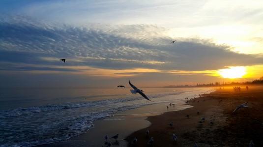 sunset-1426643_960_720