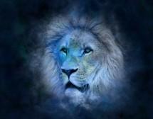 Любовен хороскоп за Лъв за 2017 г.