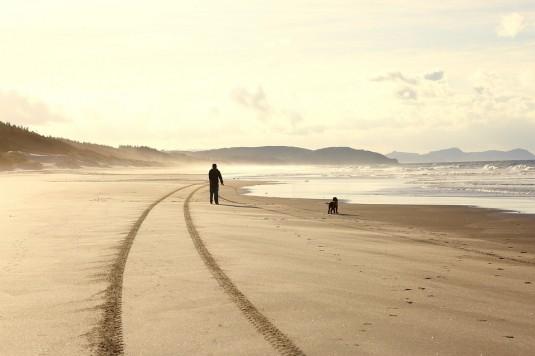 beach-1480915_960_720