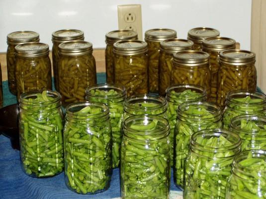 green-beans-631157_960_720
