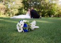 Бракът пречи на социалния живот
