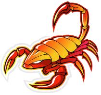 big-scorpion