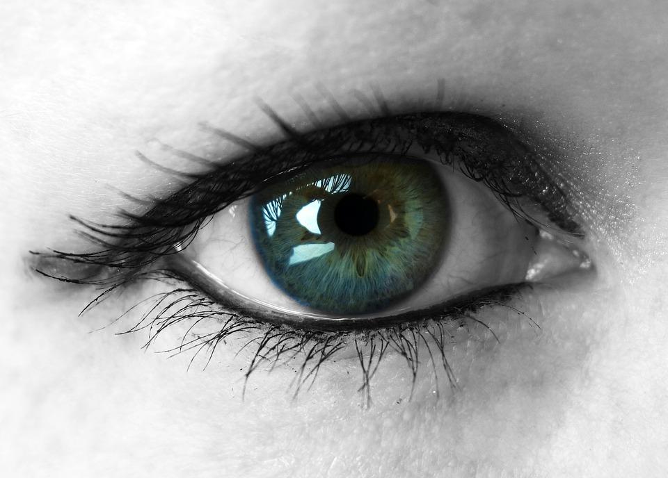 eye-1446736_960_720