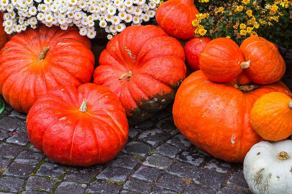 pumpkin-1713935_960_720