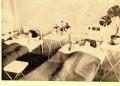 1946 г. Репортаж от първия държавен родилен дом