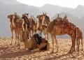 Флирт в пустинята Вади Рум