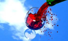 18 факта за виното