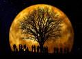 Фазите на Луната – какво да правим?