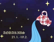 Любовен хороскоп за Водолей за 2017 г.