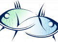 2019: Годишен хороскоп за Риби