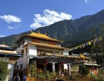 История с автобус, аптекар и монаси по пътя към Хималаите
